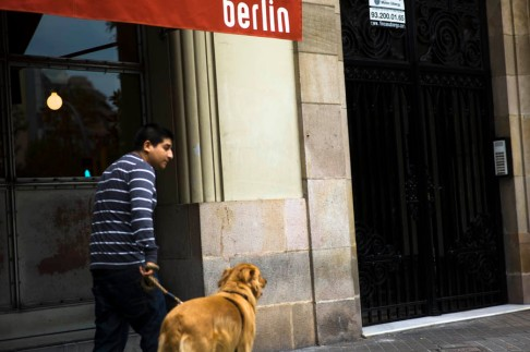 dog passing the Berlin bar